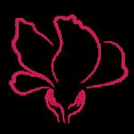 Malyvavirag_logo250x250